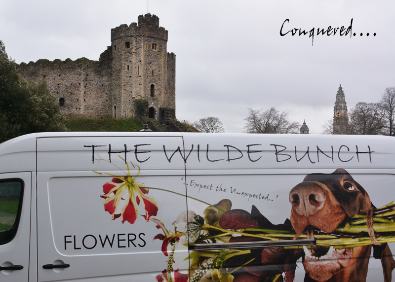 Alex Jones and The Wilde Bunch at Cardiff Castle
